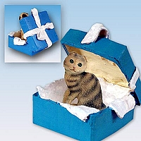 Brown Tabby Scottish Fold Gift Box Blue Ornament
