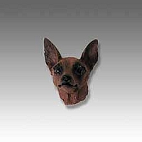 Miniature Pinscher Red & Brown Tiny One head