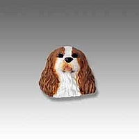 Brown & White Cavalier King Charles Tiny One head