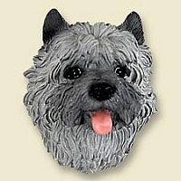 Cairn Terrier Gray Doogie Head