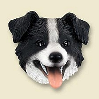 Border Collie Doogie Head