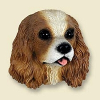 Cavalier King Charles Spaniel Brown & White Doogie Head