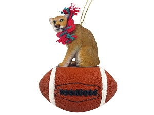 Cougar Football Ornament