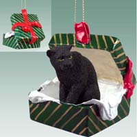 Panther Gift Box Green Ornament
