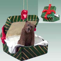 Bear Grizzly Gift Box Green Ornament
