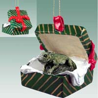 Iguana Gift Box Green Ornament