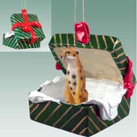 Cheetah Gift Box Green Ornament