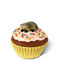 Badger Cupcake Trinket Box