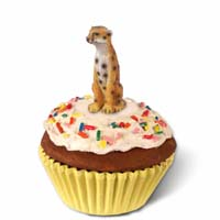 Cheetah Cupcake Trinket Box