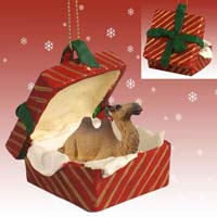 Camel Bactrian Gift Box Red Ornament