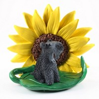 Kerry Blue Terrier Sunflower Friend