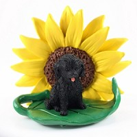 Cockapoo Black Sunflower Friend