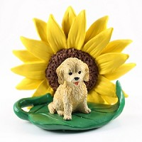 Cockapoo Blond Sunflower Friend