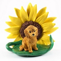 Goldendoodle Sunflower Friend